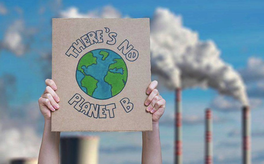 5 Steps How You Can Save the Planet